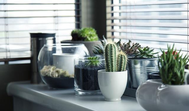 אלמנטים לעיצוב הבית